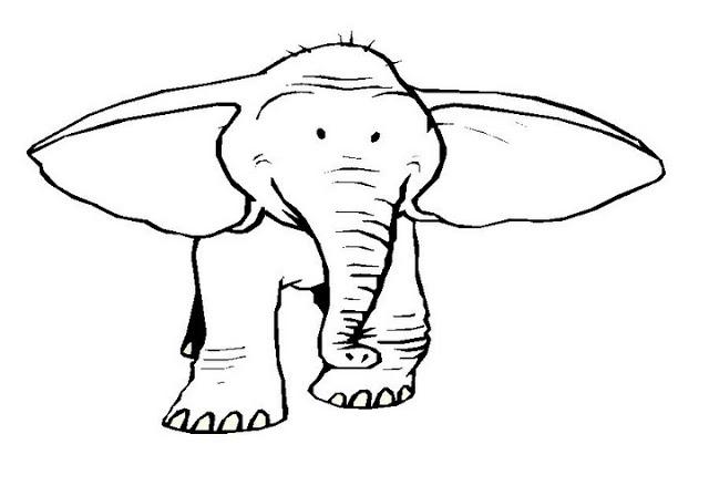 elefante-orejon