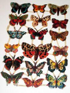 cromos-mariposa