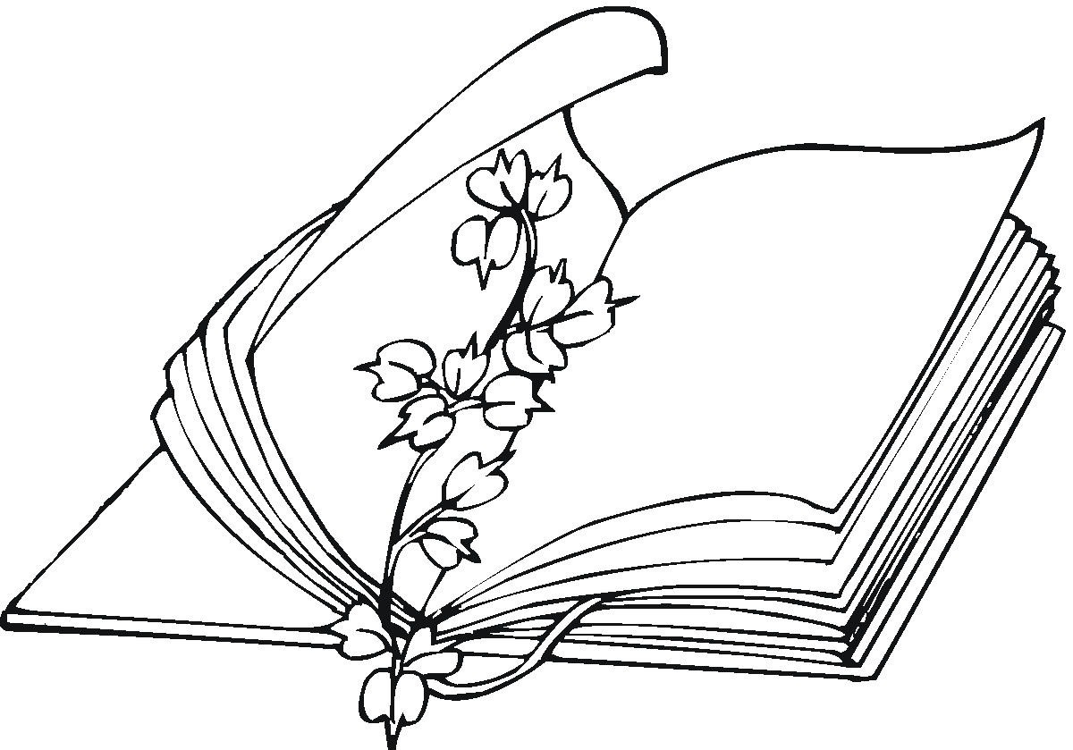 Fichas Dia Del Libro