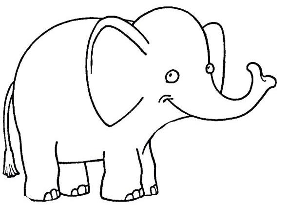elefante-4